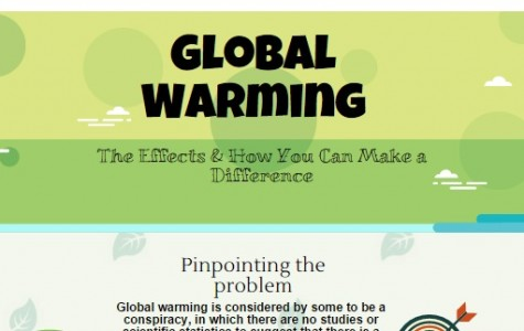 Global Warming: What you can do (infographic)