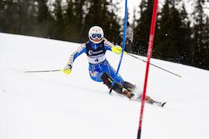 Skiers take run at States