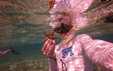 Petlock dives into marine biology