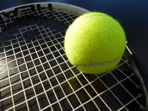 Boys' tennis triumphs