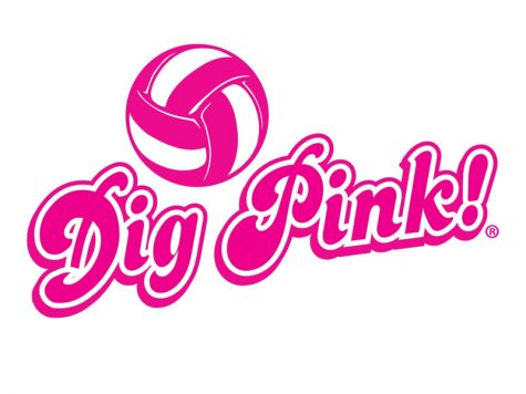 Girls' volleyball hosts Dig Pink event to raise funds, awareness for breast cancer