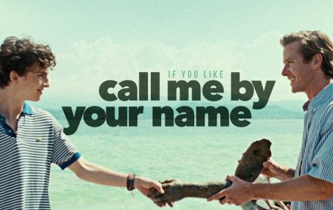 REVIEW: 'Call Me by Your Name' revitalizes videography