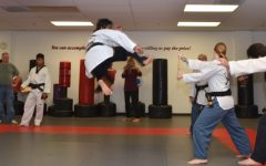 Sophomore dedicated to excelling in taekwondo, attends national championship