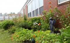 Garden gives opportunity to grow