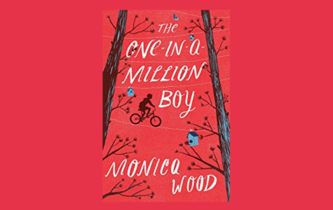 REVIEW: One in a million reasons not to read 'One-in-a-Million Boy'