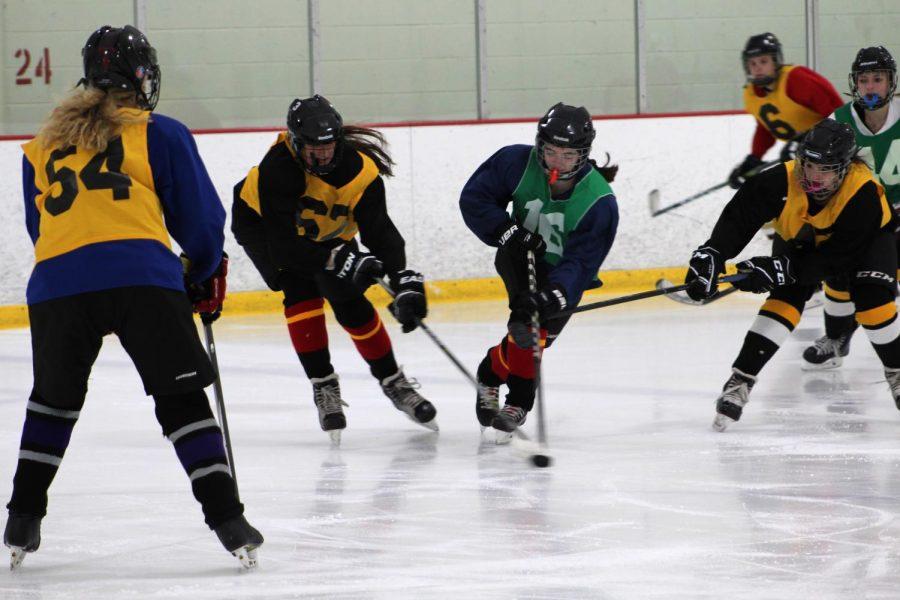 HockeyTryout2