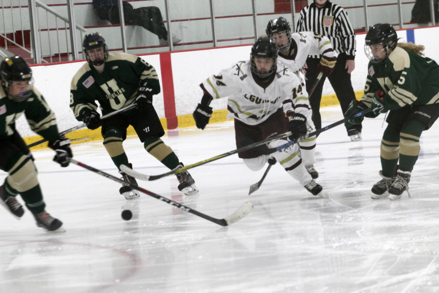 Algonquin sophomroe forward Averi Curran races after the puck to attempt a shot on Ursuline's goal. In her first year on the team Curran made a large impact.