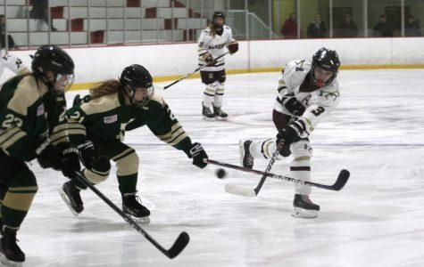 Girls' hockey blows-out Ursuline Academy in first round of playoffs