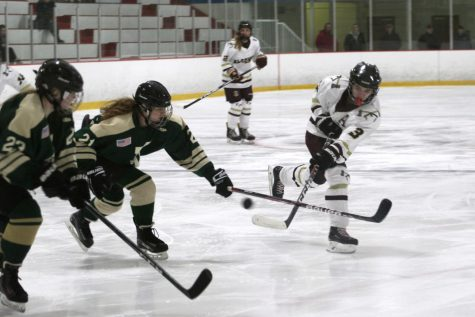 Girls' hockey blows-out Ursuline Academy in first round of playoffs