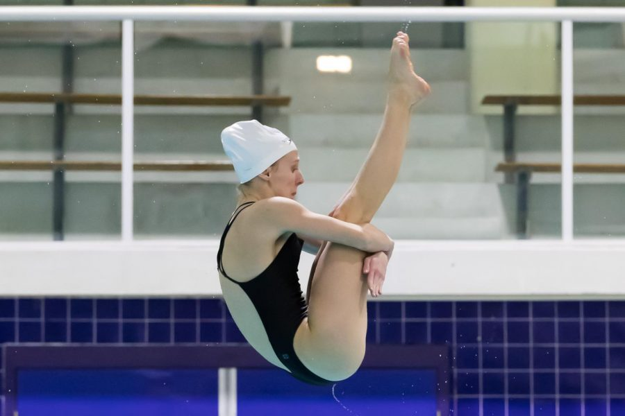 Meschisen dives toward perfection, finishes third in state