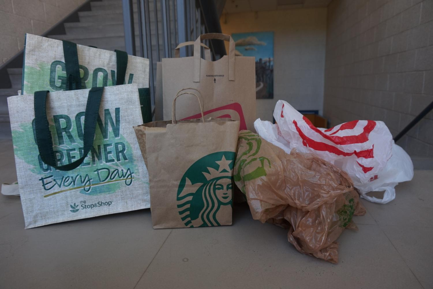 Staff writer Elyssa Rubin argues that both paper and plastic bags have negative effects on our environment.