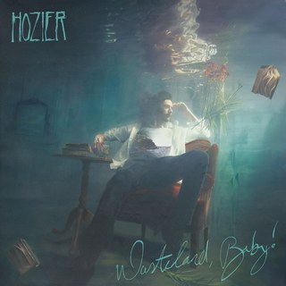 REVIEW: Hozier continues with folk, indie sound on  'Wasteland baby!'