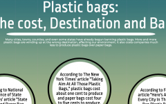 Plastic bags: The cost, destination, ban