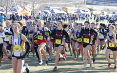 Cross country teams cap off season with States meet