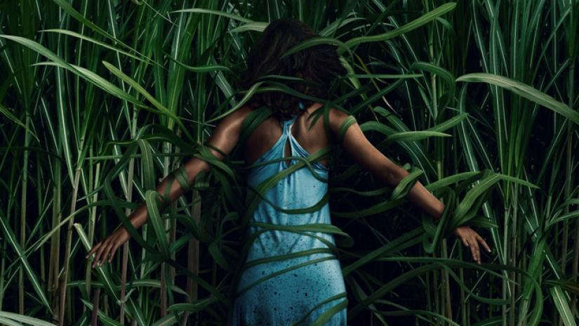 Staff Writer Aaron Hafiani writes that the Netflix film In the Tall Grass has some redeeming qualities, but overall it is a very bland and common horror film.