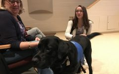 Library hopes to introduce therapy dog to improve mental health