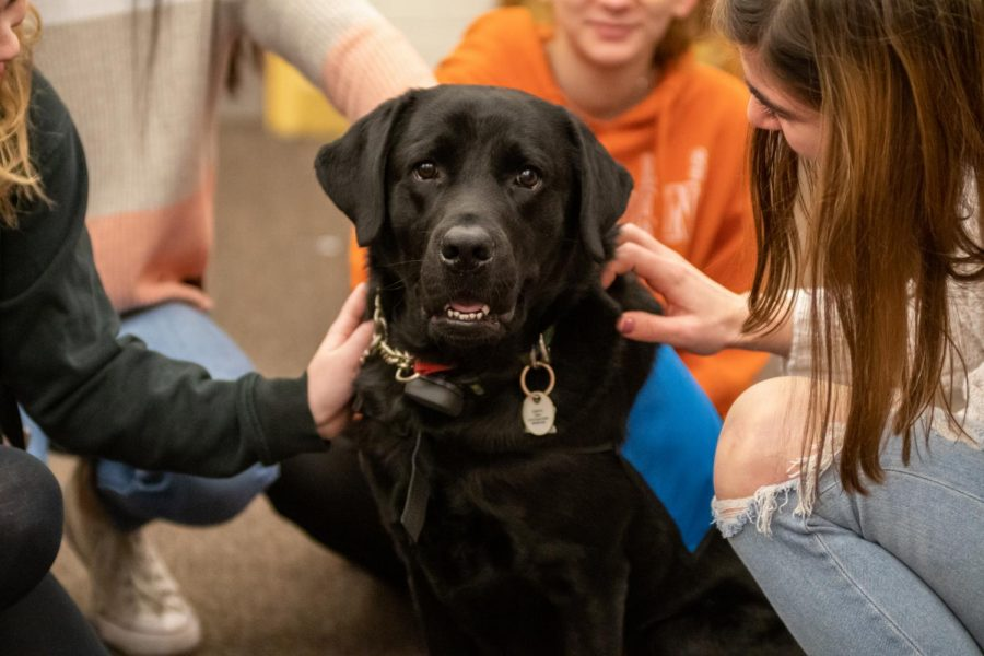 On Feb. 26, his first day at Algonquin, Parker, a 3-year-old therapy dog, is surrounded by students in the library. There is a sign outside the library indicating when Parker will be there for students to visit.