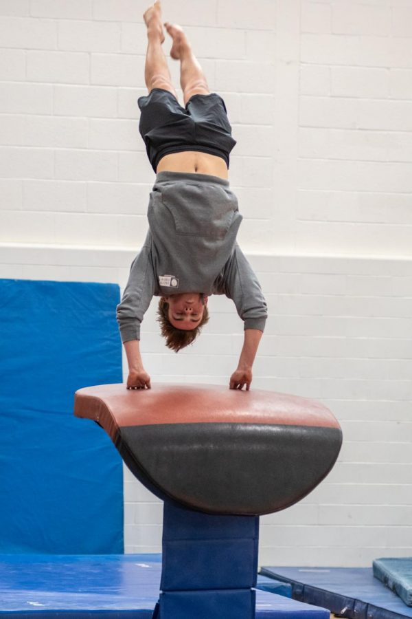 As sophomore Luke Tegan does a front handspring onto the vaulting horse, he prepares to land on the mat.
