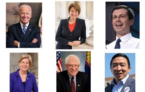 Assistant News Editors Melissa Dai and Claire Bai organize some of the major issues of each of the six biggest contenders for the Democratic Presidential Nomination.