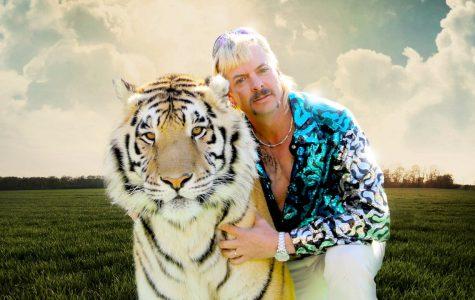 #2 Tiger King (2020)