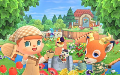 Editor-in-Chief Catherine Hayden writes that new relaxing and cute 'Animal Crossing: New Horizons'  provides endless fun.