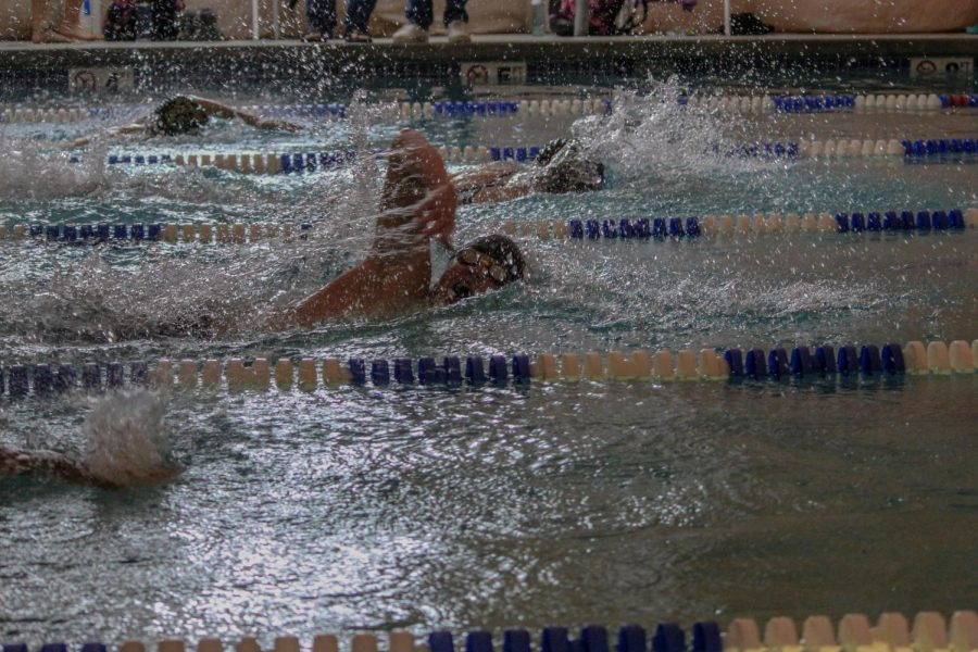 Swimmers race to the finish during the February 5 swim meet. While students compete virtually, both boys and girls still compete at the same time.