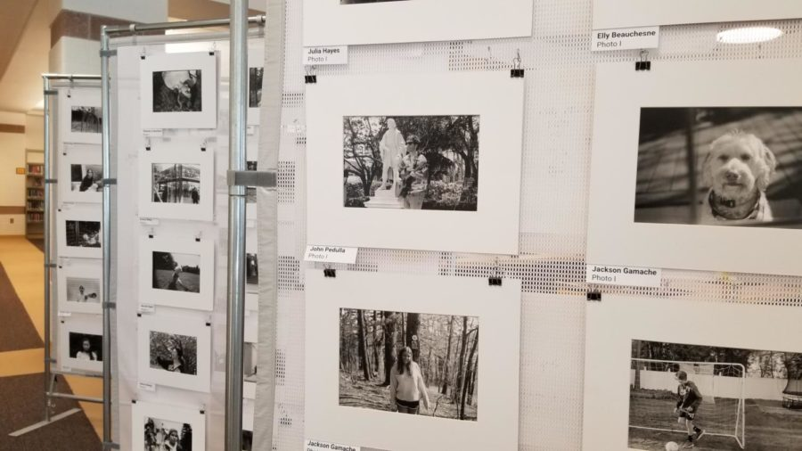 Many pieces of art, including photos taken by Photo I students, are on display in the library.