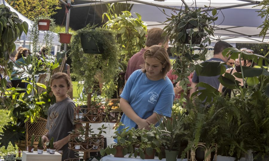 Two girls look at plants for sale at the Applefest Farmers Market.
